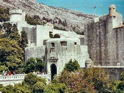 """Studio apartment VLAHO - """"VILLA GLORIA"""" 7468, Ploče, Dubrovnik, Dubrovnik Region"""
