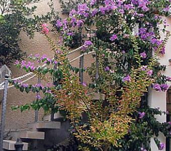 Appartamenti ČULE 7848, Cres, Cres, Regione Kvarner