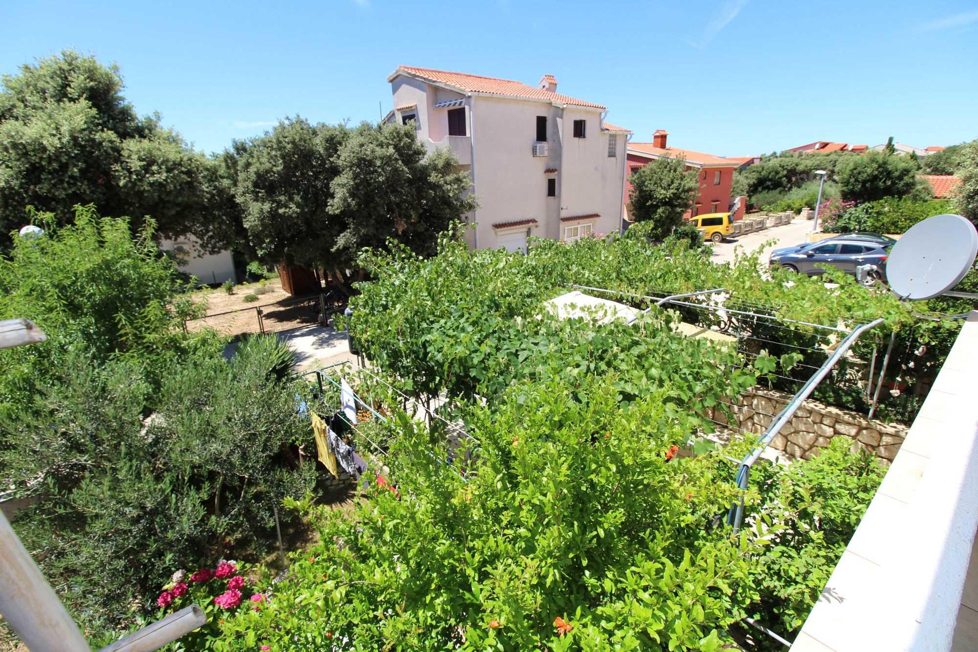 Appartements DVORSKI  02 9077, Mandre, Pag, Région de Zadar