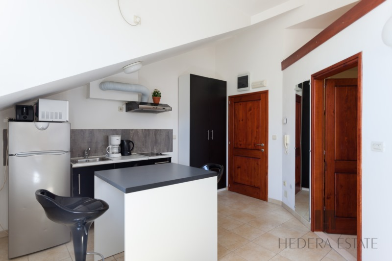 Hedera Studio 1 - Hedera Studio 1