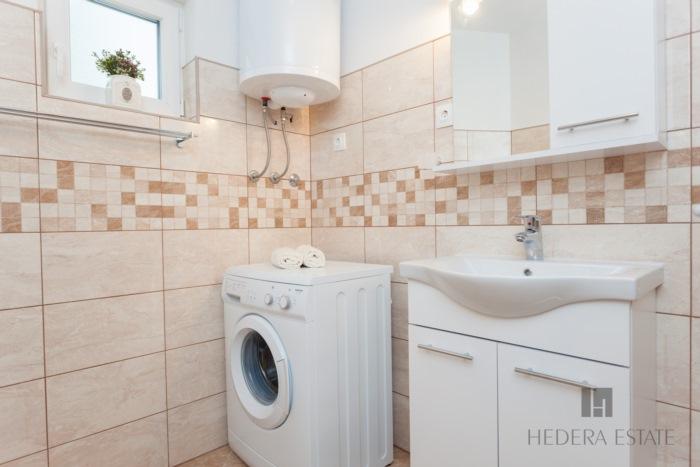 Hedera A49 - Hedera A49