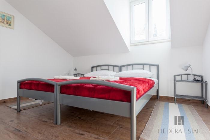 Hedera A51 - Hedera A51