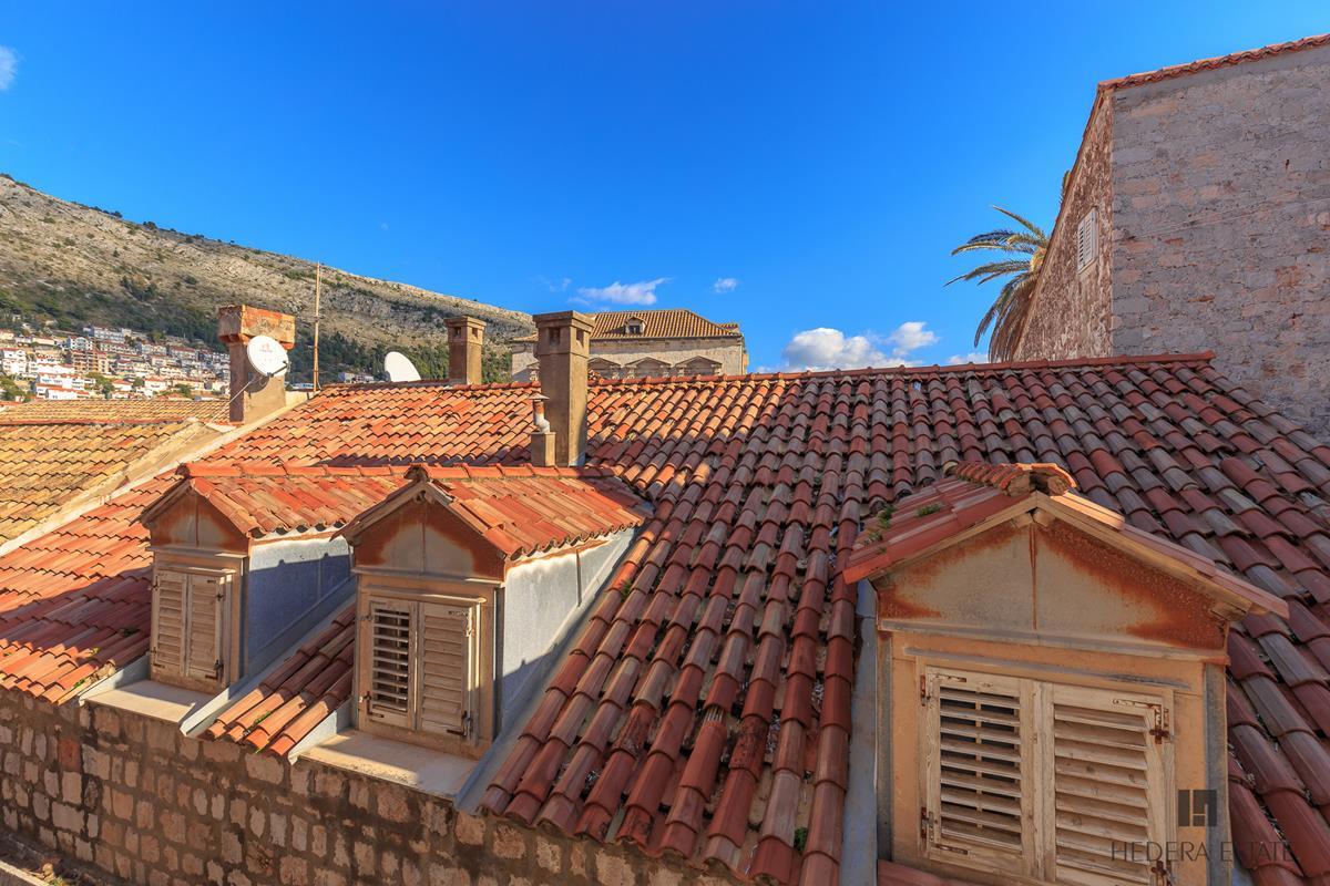 Hedera A4 759, Dubrovnik - Old Town, Dubrovnik, Dubrovnik region