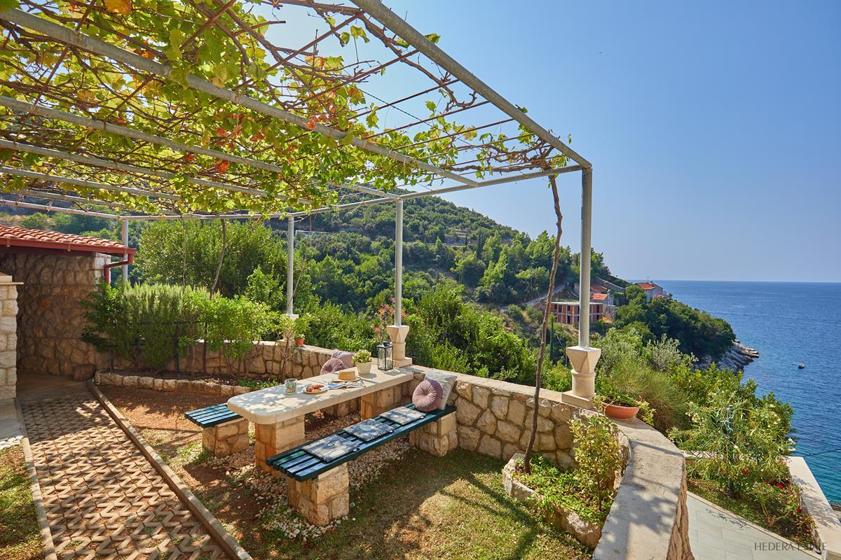 Hedera A53 1300, Zaton, Dubrovnik Riviera, Dubrovnik region